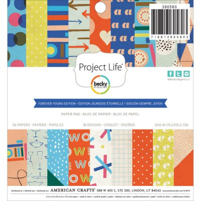Mini Pack 15x15 - American Crafts - Project Life - Forever Young