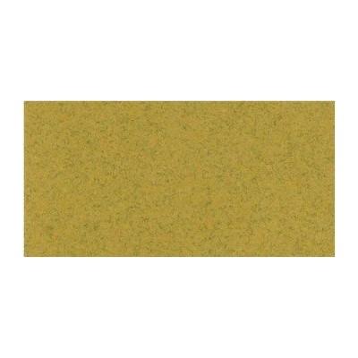 Bazzill Beach - Texture lisse