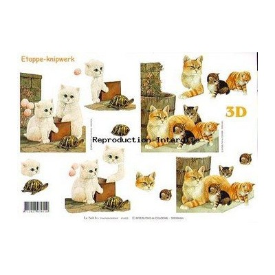 Image Carterie 3D - Chats & Tortue