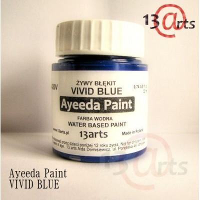 Peinture Ayeeda Paint - Vivid Blue