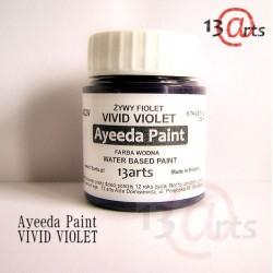 Peinture Ayeeda Paint - Vivid Violet