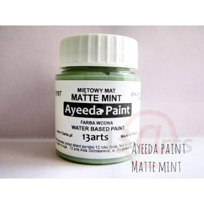 Peinture Ayeeda Paint - Matte Mint
