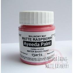 Peinture Ayeeda Paint - Matte Raspberry