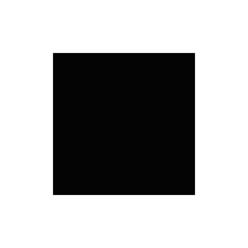 Cardstock lisse - Coloris Noir