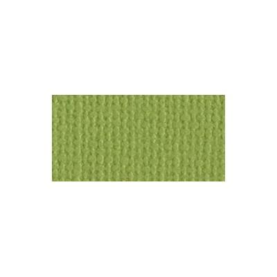 Bazzill Parakeet - Texture Canvas