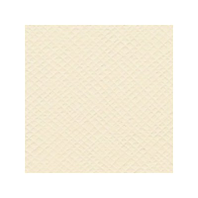 Bazzill Cream Puff - Texture Criss Cross