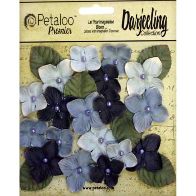 Fleurs Darjeeling Hydrangeas  - Bleues