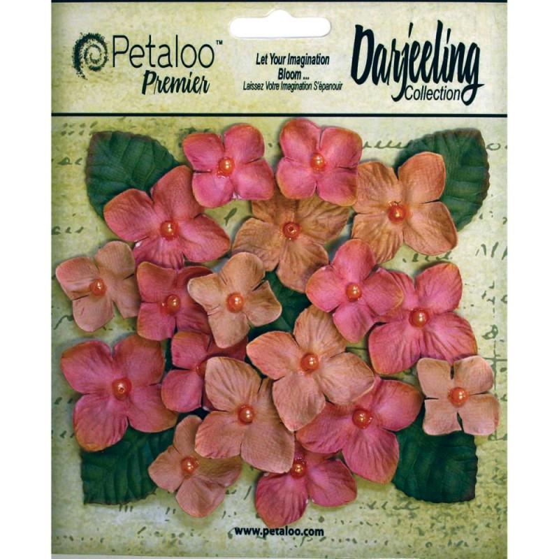 Fleurs Darjeeling Hydrangeas - Vieux Rose
