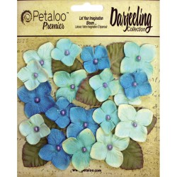 Fleurs Darjeeling Hydrangeas - Turquoise