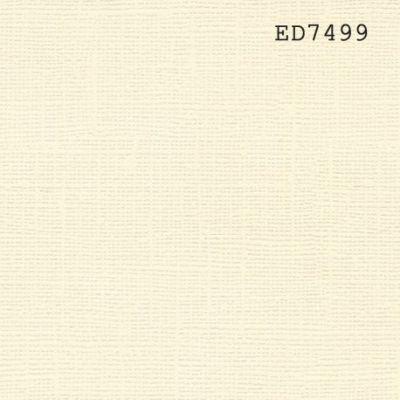 Cardstock texturé canvas - Coloris Blanc Ivoire
