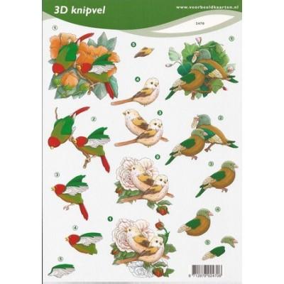 Image Carterie 3D - Oiseaux & Fleurs