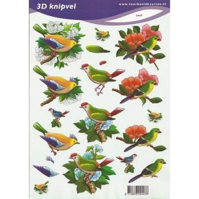 Image Carterie 3D - Oiseaux exotiques & Branches fleuries