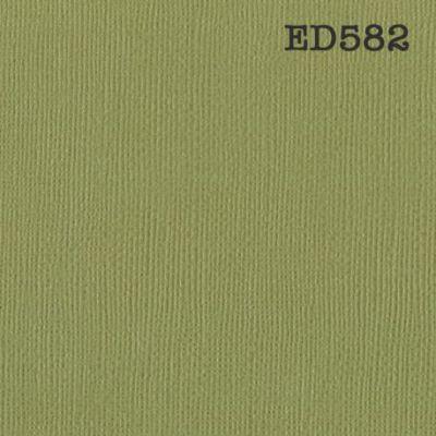 Cardstock texturé canvas - Coloris vert kiwi