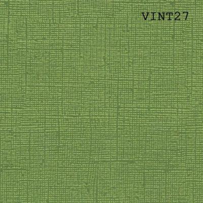 Cardstock texturé canvas - Coloris Vintage Vert Avocat