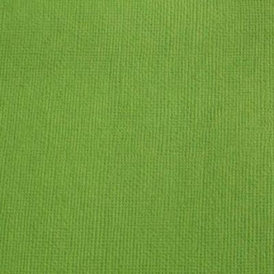 Cardstock texturé canvas - Coloris Vert Mousse