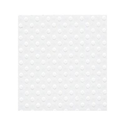 Bazzill A4 Salt - Texture Swiss Dot
