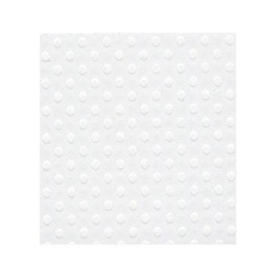 Bazzill A4 Salt - Texture Swiss Dot