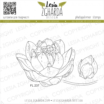 Tampons transparent Lesia Zgharda - Waterlily