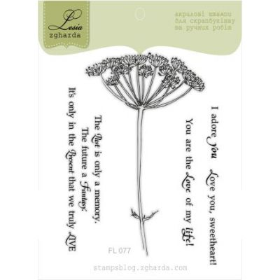 Tampons transparent Lesia Zgharda - Dill