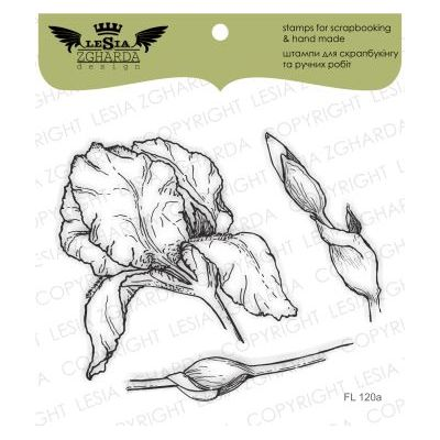 Tampons transparent Lesia Zgharda - Iris