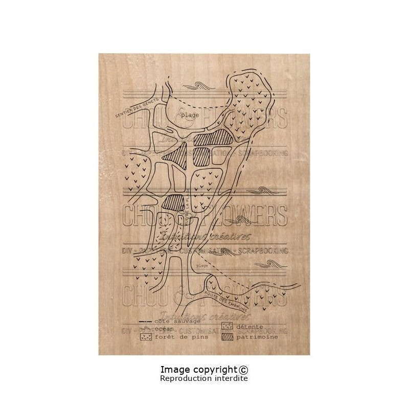 Tampon bois Chou & Flowers - Plan