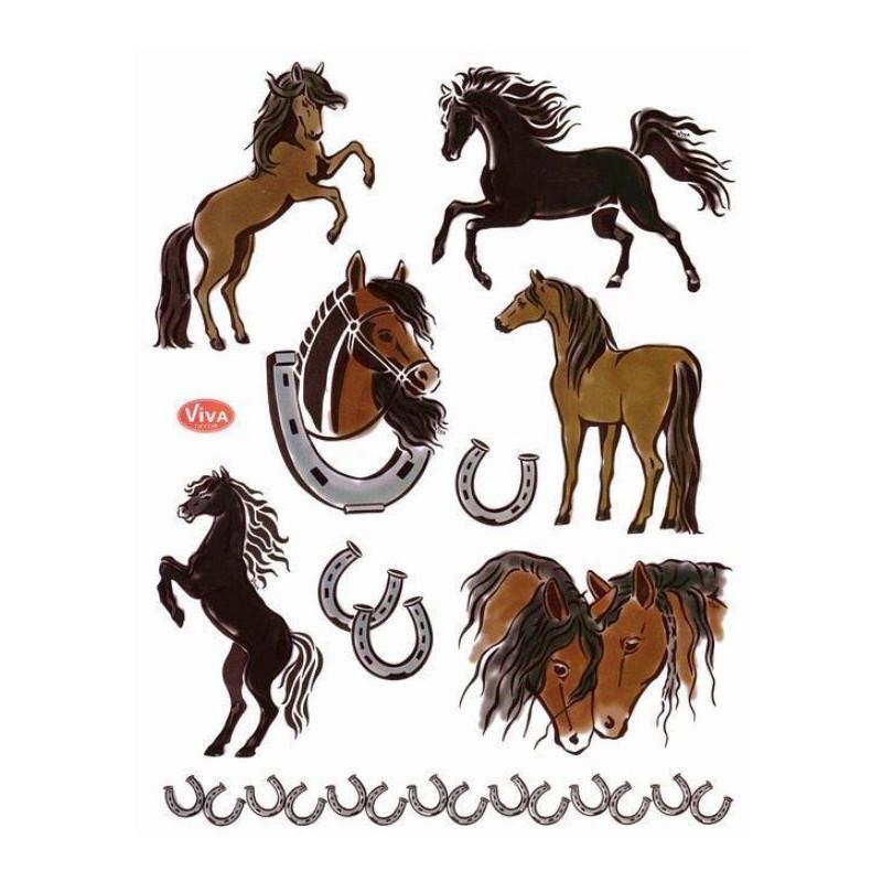 Tampons transparents Viva - Les chevaux