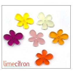 Décoration Acrylique Lime Citron - Fleurs d'été