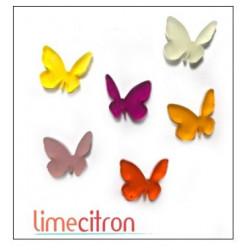 Décoration Acrylique Lime Citron