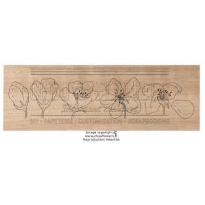 Tampon bois Chou & Flowers - Fleurs de pommier
