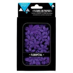 Fleurs Floripétal -Myrtille