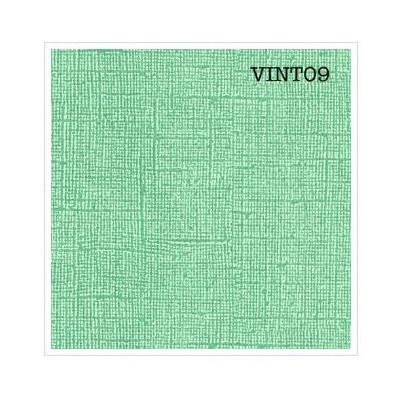 Cardstock texturé canvas - Coloris Vintage vert menthe