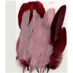 Plumes d'oie - 5 plumes - Tons rouge rose