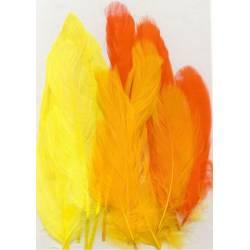 Plumes d'oie - 15 grandes plumes - Tons jaune orange