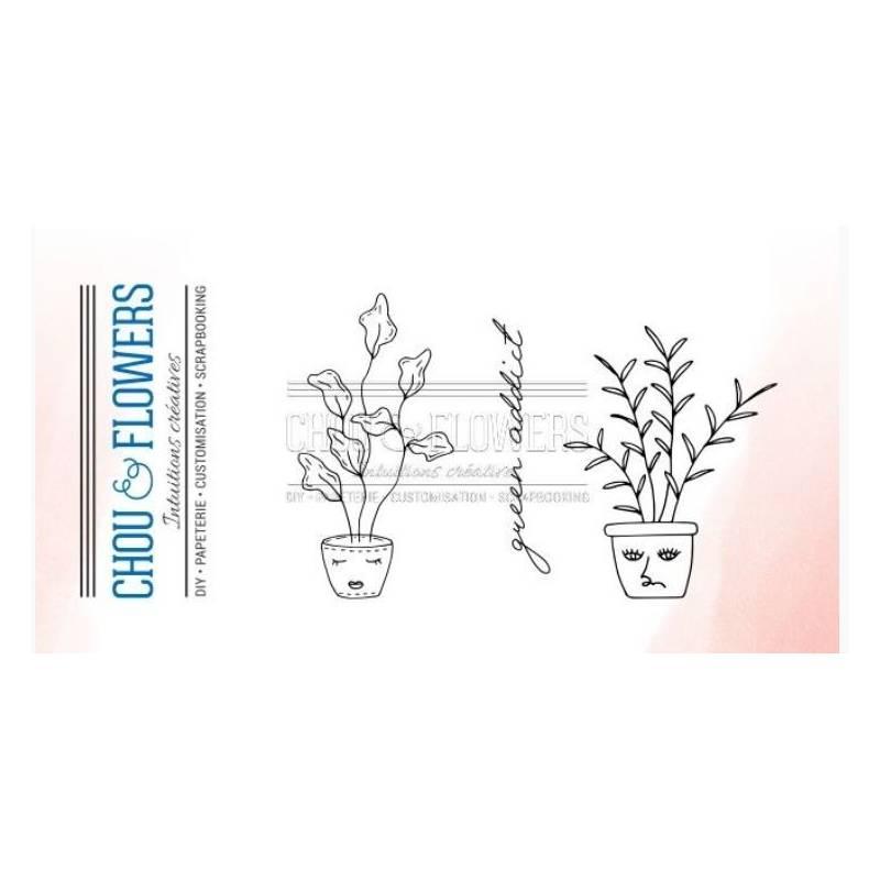 Tampons Clear - Chou & Flowers - Home - Pot de fleurs