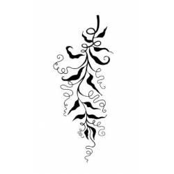 Tampon Clear - Lavinia - Vignes sauvages - Wild Vines