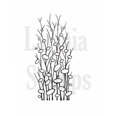 Tampon Clear - Lavinia - Herbe Zen - Zen Grass