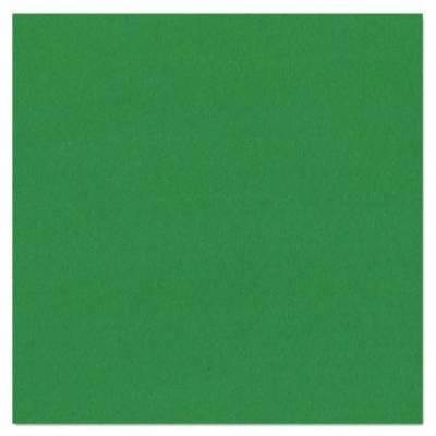 Bazzill Texture Canvas - Classic Green