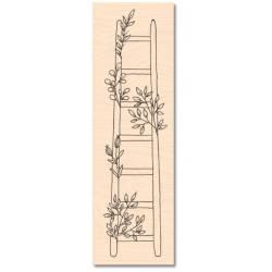 Tampon bois - Collection Jardin d'Hiver - Jolie échelle