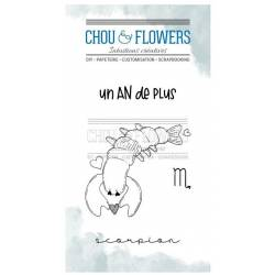 Tampons Clear - Chou & Flowers - Doudou Scorpion