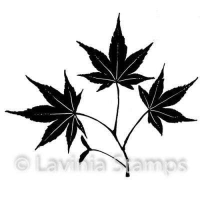 Tampon Clear - Lavinia - Mini leaf 5