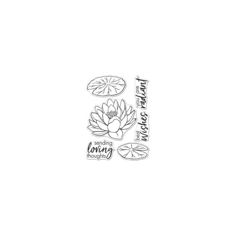 Tampons transparents - Hero Arts - Lotus