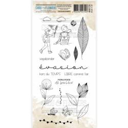 Tampons Clear - Chou & Flowers - Evasion hors du temps