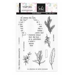 Tampons clear - Sokai - En attendant l'hiver : Mon herbier