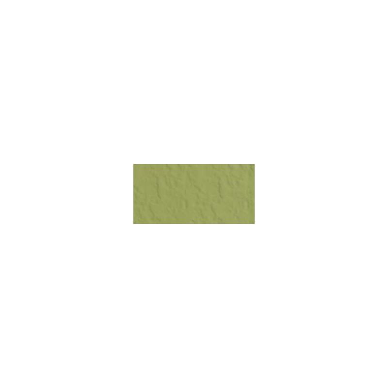 Bazzill Celery - Texture Orange Peel