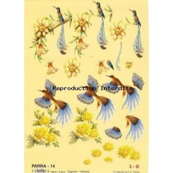 Image Carterie 3D - Oiseau de Paradis