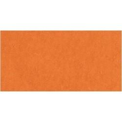 Cardstock AC - Apricot (non texturé)