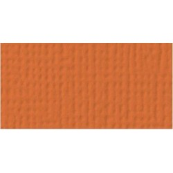 Cardstock AC - Apricot
