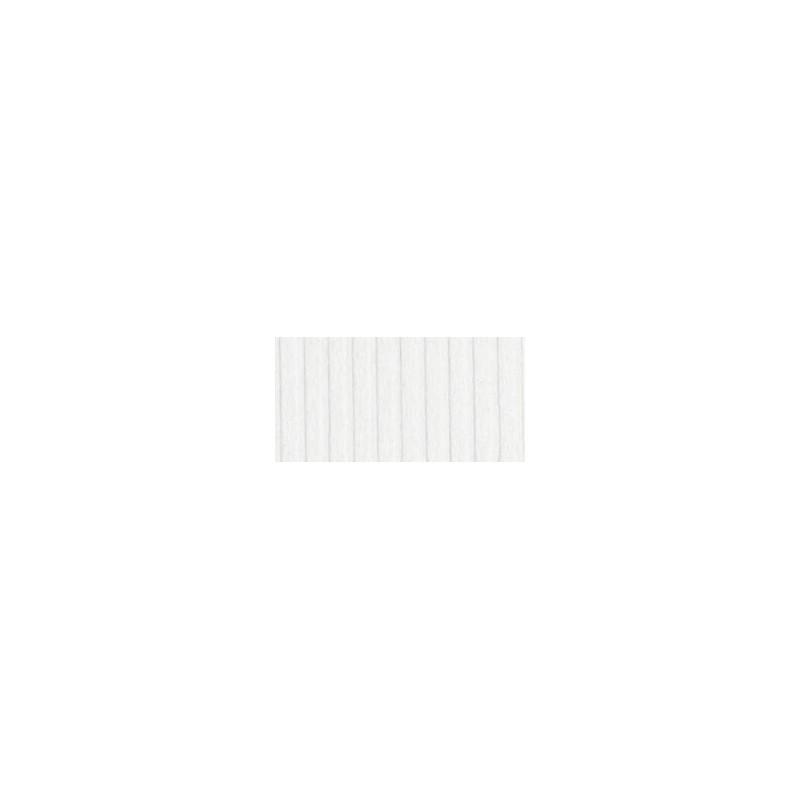 Bazzill Eggshell - Texture Washboard