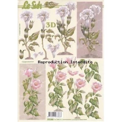 Image Carterie 3D - Fleurs roses et blanches sur tiges